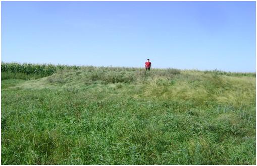Археологические разведки на территории Топчихинского района в 2019 году